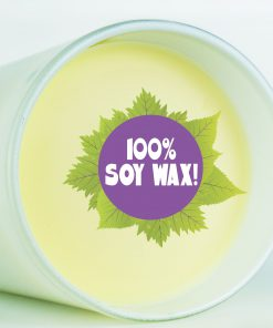 100% Soy Wax Candle Vandal