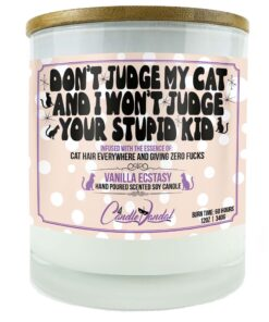 Don't Judge My Cat And I Won't Judge Your Stupid Kid Candle